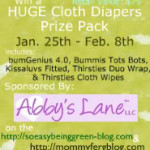 New Year, New Babies, New Mommies of 2 Giveaway – Grand Prize