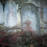 Coming to terms with your mortality once you have children