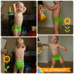Cloth Diaper Review: BabyKicks Basic Cloth Diaper