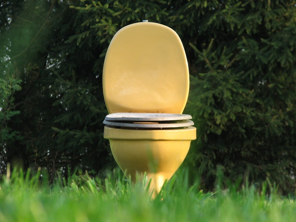Toilet in a field