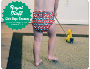 Royal Fluff One-Size Pocket Diaper Giveaway
