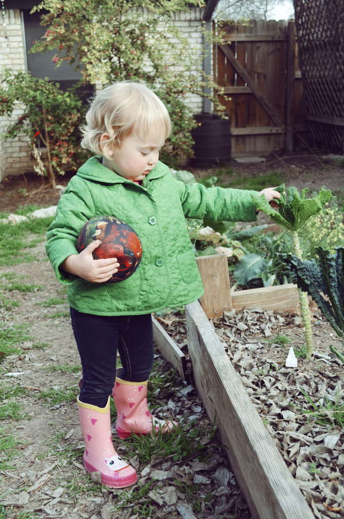 Isla picking kale from the garden