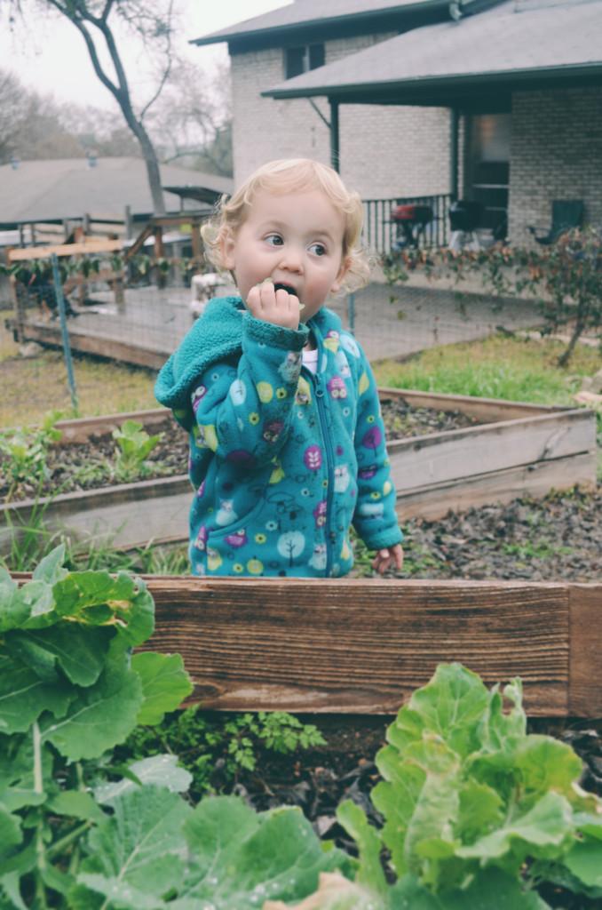 Isla tastes green from the gardens