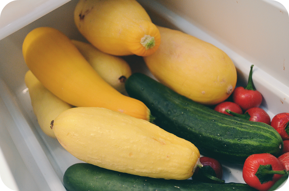 Zucchini, Squash and Peppers