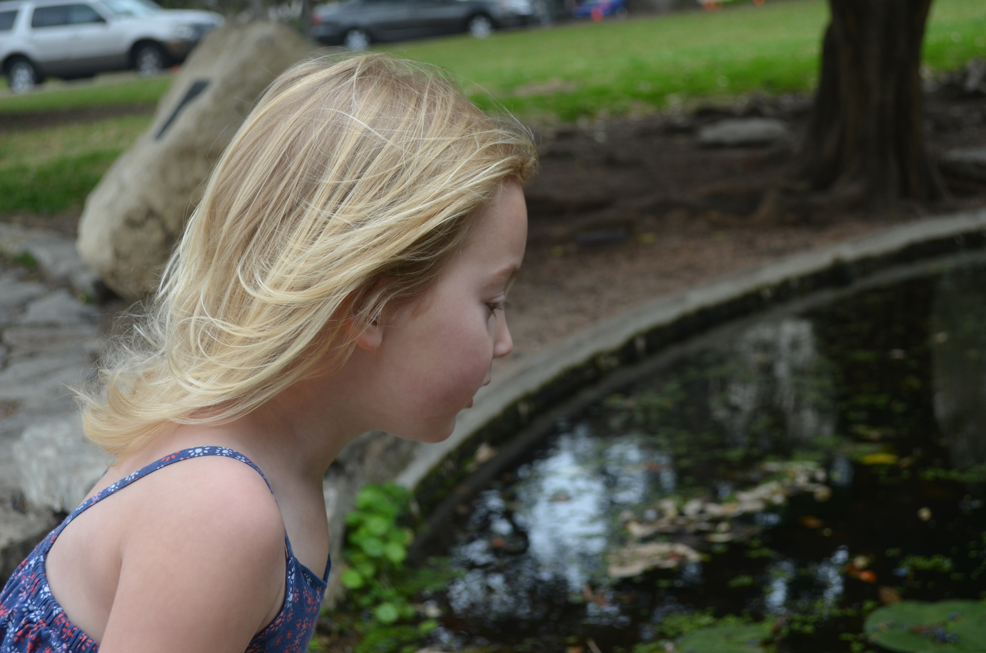 Isla at the turtle pond