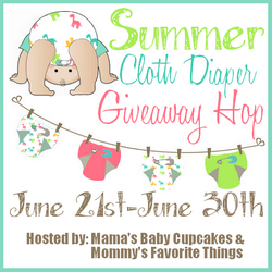 Summer Cloth Diaper Giveaway Hop