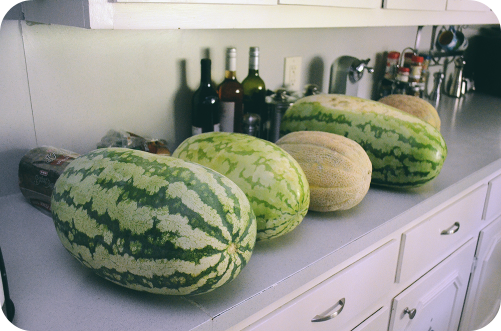 Watermelon and Canteloupe
